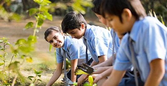 Pinjore Schools