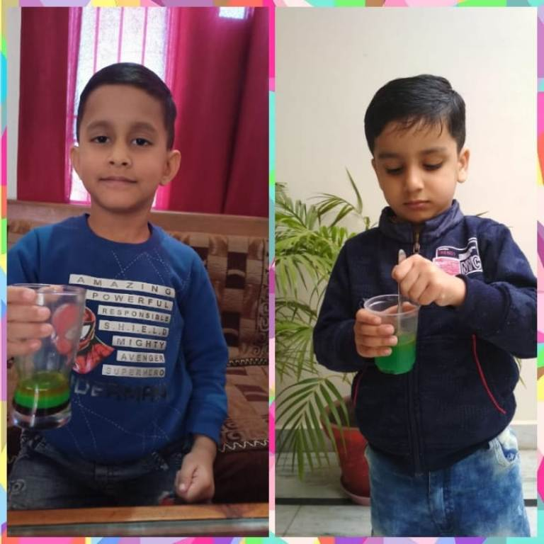 Science Education Activity